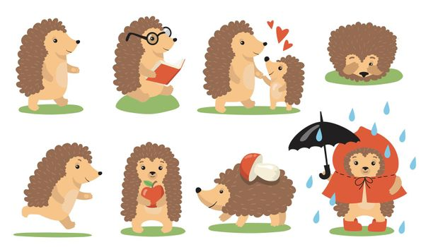 Cute hedgehog actions and poses set