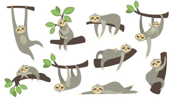 Cute sleepy sloth on branch flat icon set