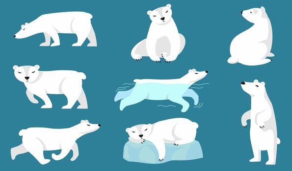 Polar bear set