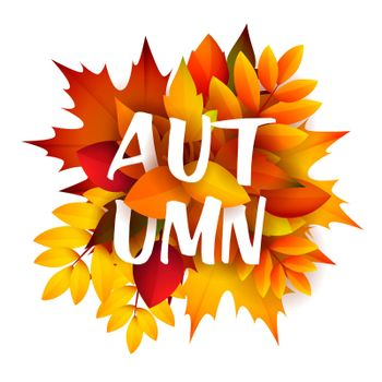 Autumn leaflet design with bunch of leaves