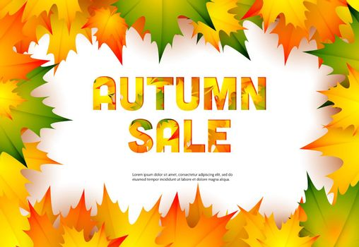 Autumn sale retail banner design with fall maple leaves