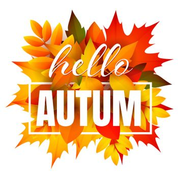 Hello autumn leaflet design with bunch of leaves