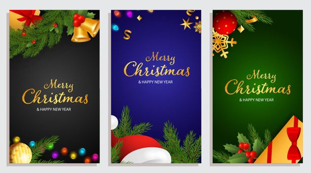 Merry Christmas and Happy New Year design with holly berries