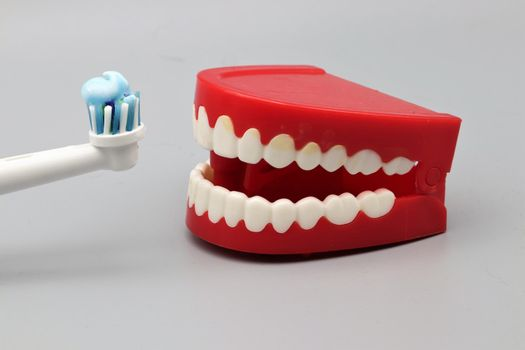 Chattering teeth being offered a toothbrush for brushing