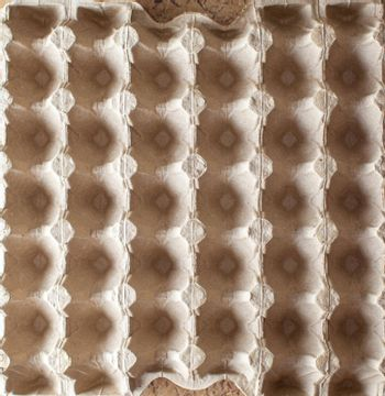 Protective cardboard packaging for storing eggs. Empty biodegradable molded egg box made of paper pulp.