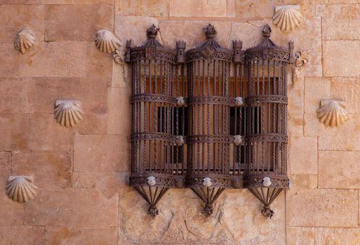 Metal railing at Casa de las Conchas, Salamanca