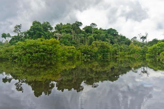 Amazon river reflection, Brazil, South America