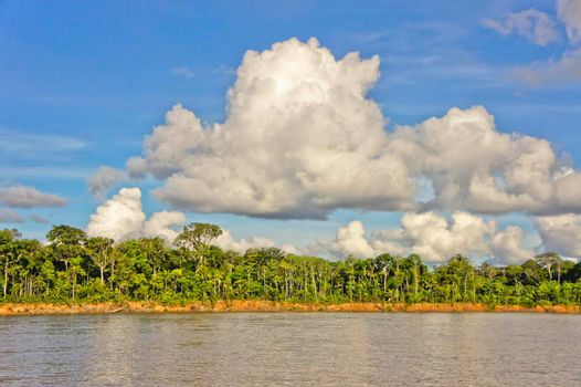 Amazon Basin, Peru, South America