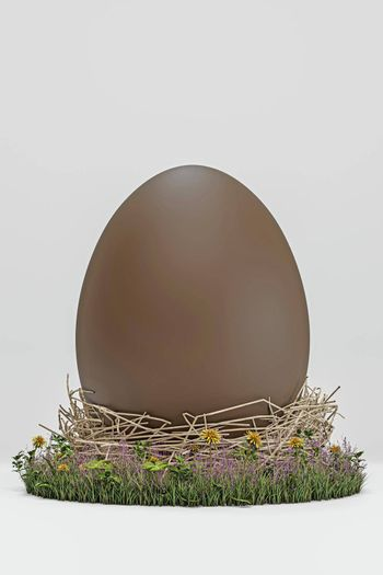 easter egg isolated on white background 3d illustration