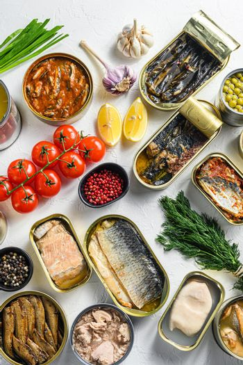 Different canned conserve products in tin cans. with fresh organic ingridients Saury, mackerel, sprats, sardines, pilchard, squid, tuna pinapple, corn, peas, mango , beans, over white textured background top view vertical