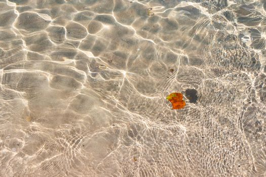 Clear transparent tropical summer beach water background