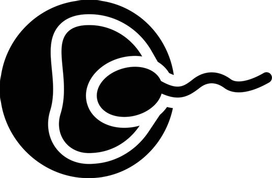 sperm oval