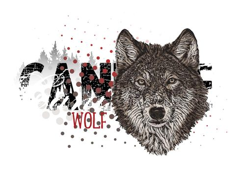 Wolf banner vector illustration