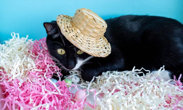 A black cat lies on the tinsel next to the eggs in a straw hat. Easter Concept.