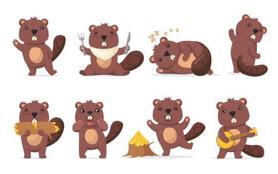 Funny beaver set