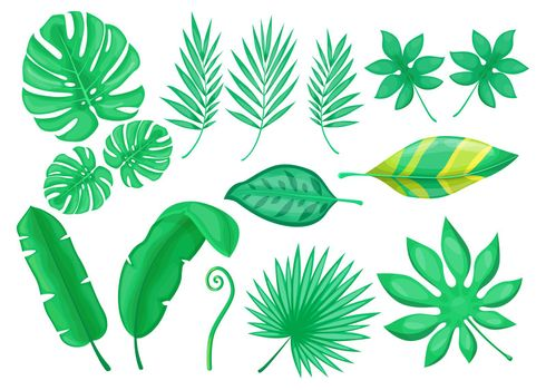 Green exotic foliage flat item set