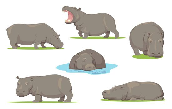 Hippo in different poses flat set for web design