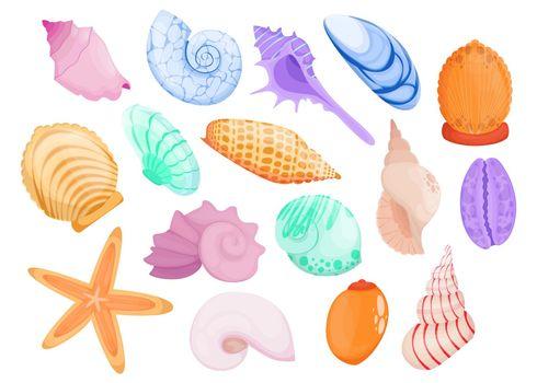 Multicolor hand drawn seashell flat item set for web design