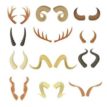 Various horns set
