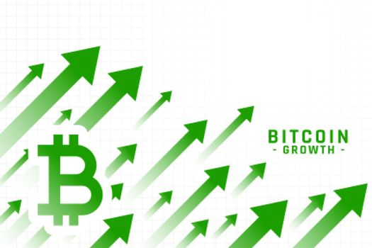 rising price of bitcoin growth chart design