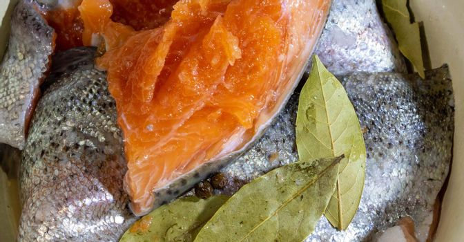 Salting fresh trout. Pieces of salted trout with salt.