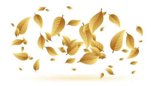 falling or floating leaves background design