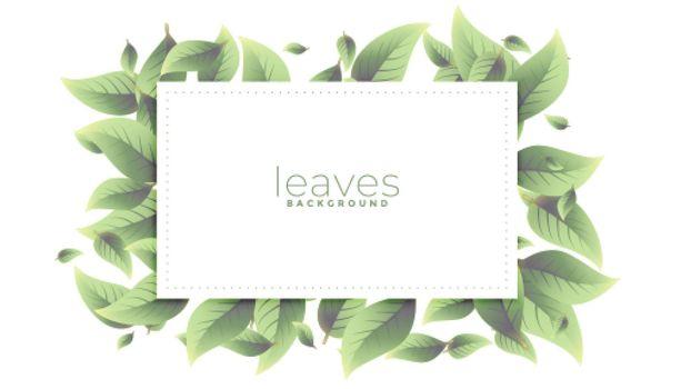 green leaves rectangular frame background design