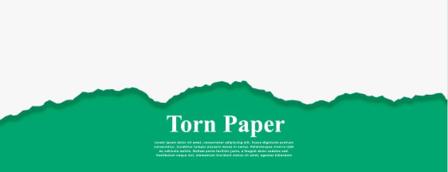 white torn paper on turquoise color banner