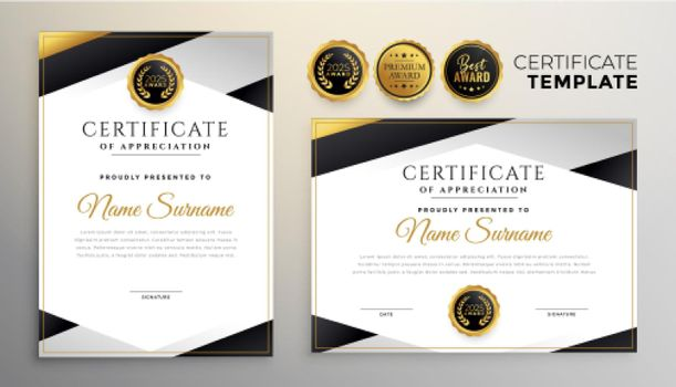 stylish company certificate of achievement template set of two