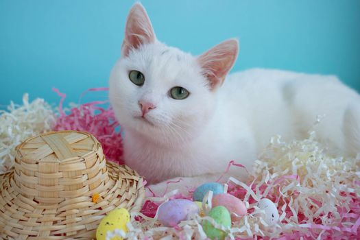 A cute white cat lies on the tinsel next to eggs and a straw hat. Easter Concept.