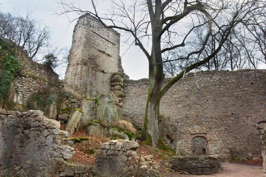 Castle Bolczow courtyard