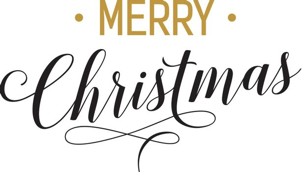 Merry Christmas Lettering and Flourish