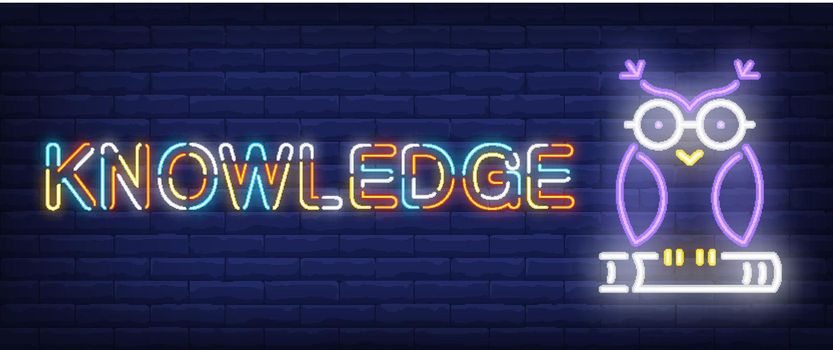 Knowledge neon text with owl on book