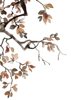 Watercolor tree foliage