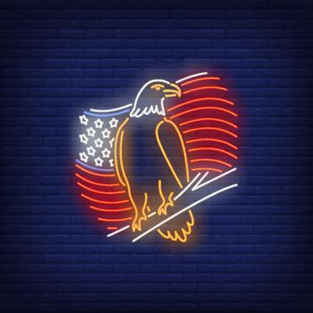American flag and eagle neon sign