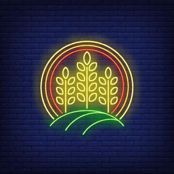 Wheat ears in circle neon sign