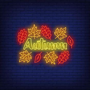 Autumn neon sign