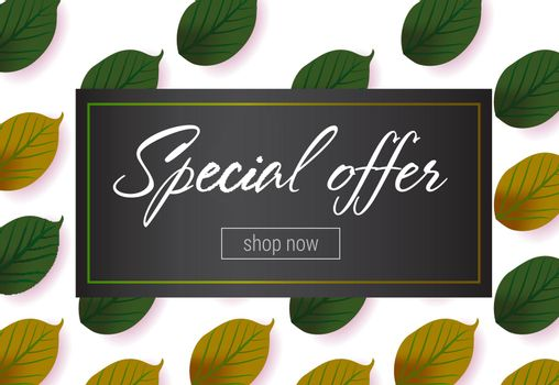 Special offer lettering with green leaves pattern
