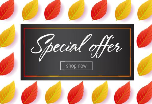 Special offer lettering with leaves pattern