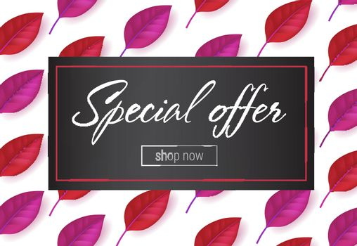 Special offer lettering in frame with leaves pattern