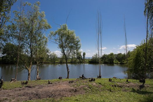 Beautiful summer landscape of lake in north of Azerbaijan. Sunny day.