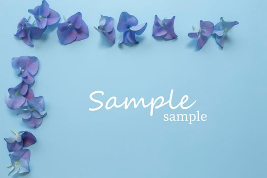 Flat lay with hydrangea or hortensia blue-purple petals, pastel blue background