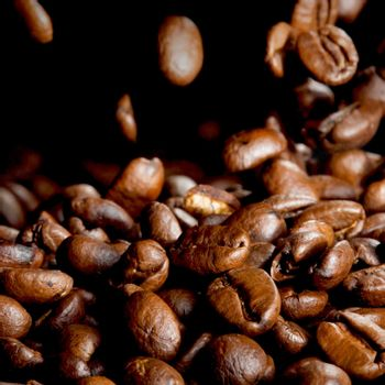 Roasted coffee beans falling down black background