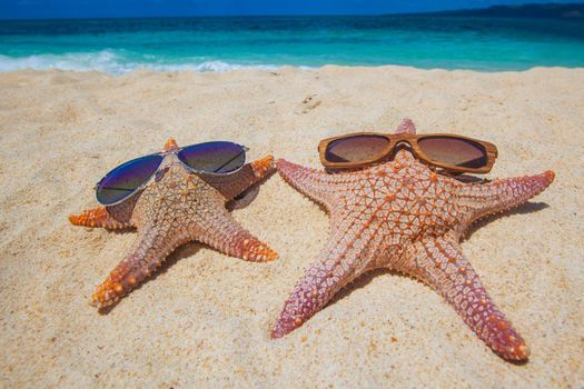 Starfish with sunglasses on sand of tropical beach at Philippines