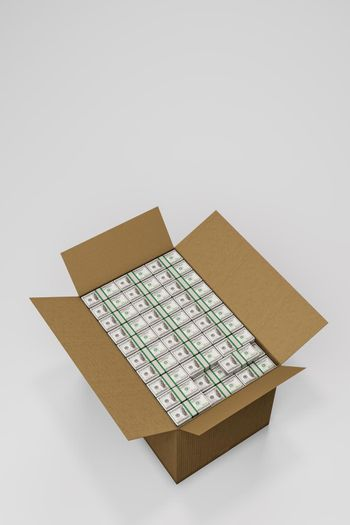 dollars in a box isolated on white background 3d illustration