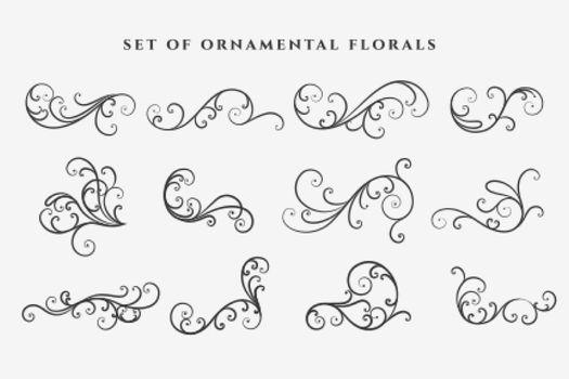 decorative floral swirl ornaments elements set