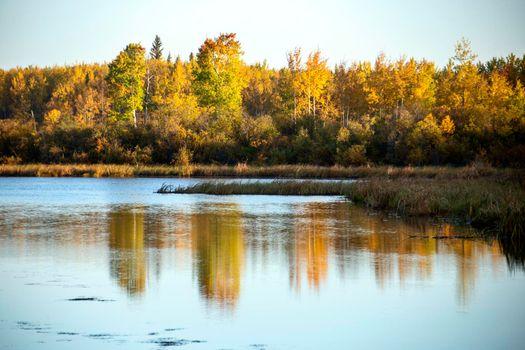 Autumn Northern Saskatchewan