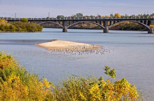 North Saskatchewan River Saskatoon