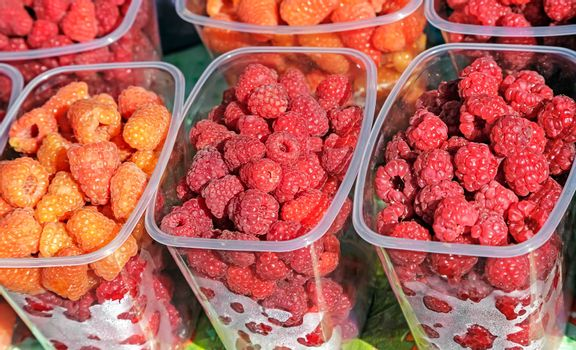 Ripe yellow and red raspberries in small containers for sale in the store.