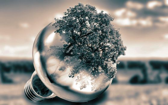 The effect of a double exposure: a light bulb, tree, landscape.